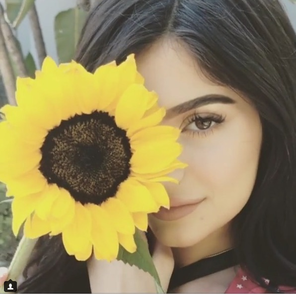kylie jenner, flowers, and jenner image