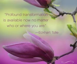 eckhart tolle and transformation image