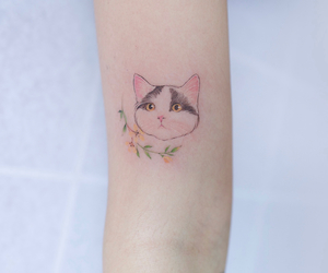animal, body art, and kitten image