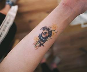 dog and tattoo image