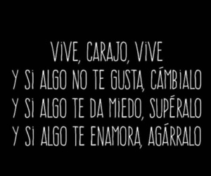 vive and frases image
