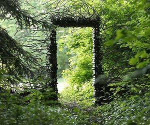 nature, forest, and door image