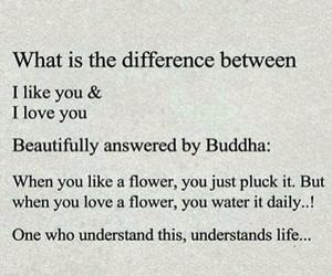 Buddha, flower, and life image