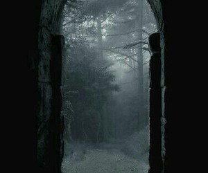 dark, forest, and door image