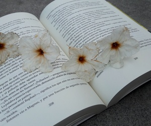books, flowers, and magic image