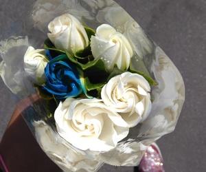 flores and gardenias image