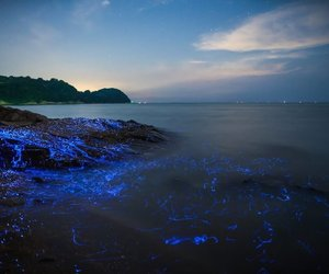beach, blue, and japanese image