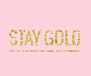 pink, quotes, and gold image