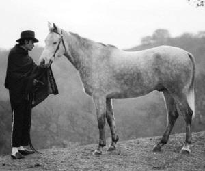michael jackson, horse, and jackson image