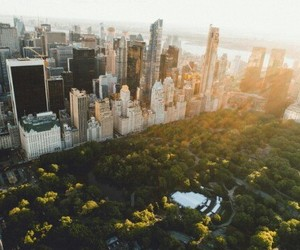Central Park, city, and freedom image
