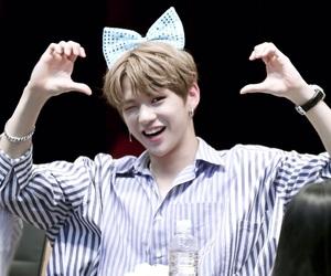 wanna one, kim jaehwan, and wannable image