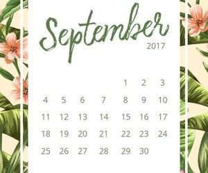 calendar, floral design, and free image