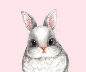 pink, rabbit, and wallpaper image