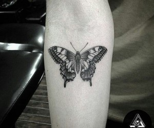 butterfly, tattoo, and forearm image