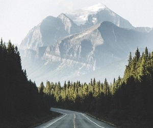 forest, mountains, and travel image