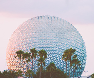 disney, photography, and Walt Disney World image
