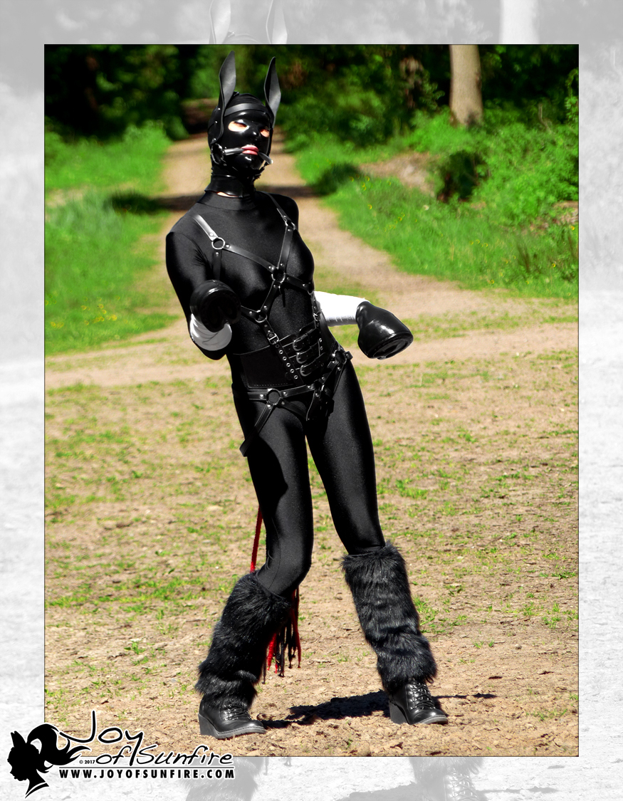 article, fetish, and ponyplay image