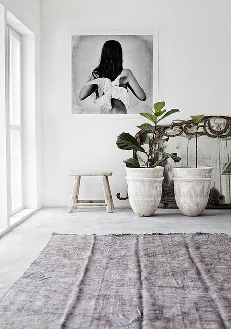 home, design, and plants image