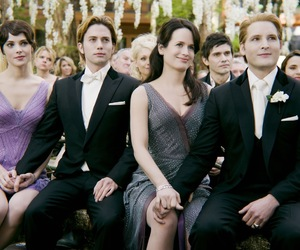 twilight, breaking dawn, and wedding image