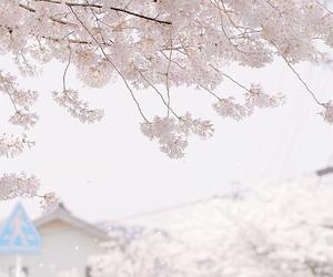 cute pink kawaii sky image