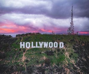 color, hollywood, and photograph image
