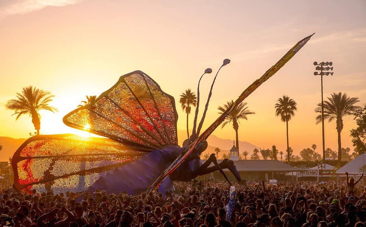 coachella, music, and butterfly image