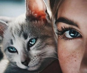 animals, girl, and pretty image