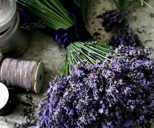 beautiful, purple, and country living image