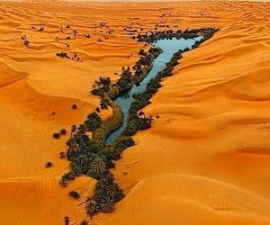 desert, oasis, and nature image