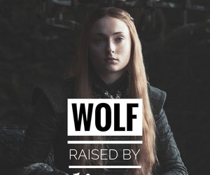 wolf, game of thrones, and sansa stark image
