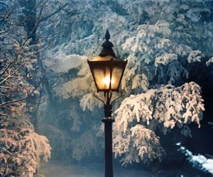 lamppost, Lucy, and mr tumnus image