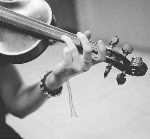 music, violin, and lindsey image