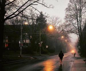 autumn, rain, and street lights image