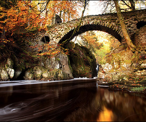 autumn, fall, and river image