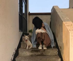 dog, girl, and aesthetic image
