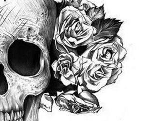 skull, rose, and drawing image
