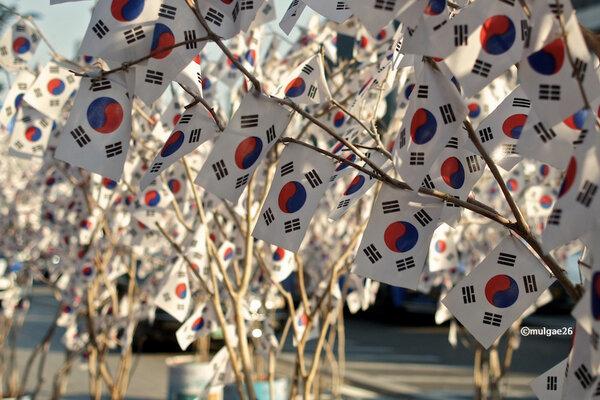 korea, article, and south korea image