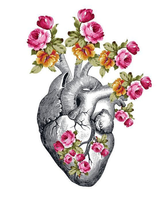 greek, article, and heart image