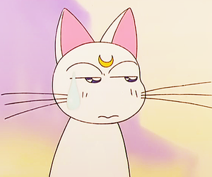 anime, sailor moon, and artemis image