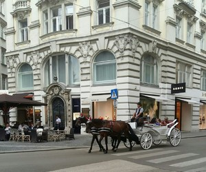 austria, city, and horse image