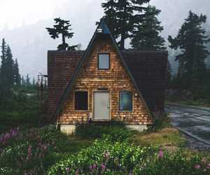 cabin, home, and woods image