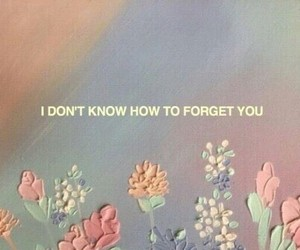 quotes, flowers, and aesthetic image