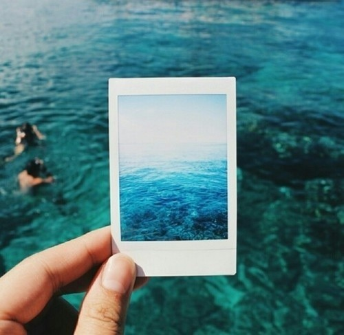 summer, blue, and sea image