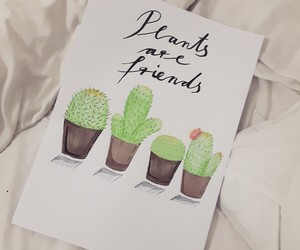 are, cactus, and calligraphy image