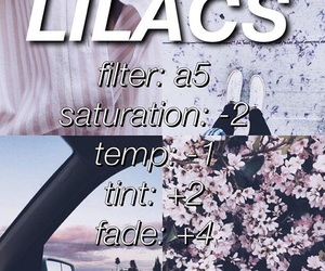 filter, flowers, and lilac image