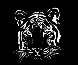 animals, tattoo, and tiger image