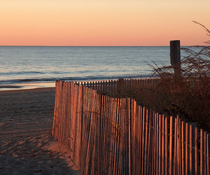 coast, ocean, and ocean city maryland image