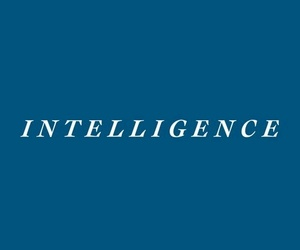 blu, harry potter, and intelligence image