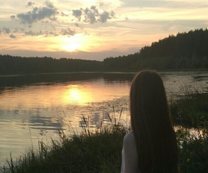 evening, sunset, and forest image