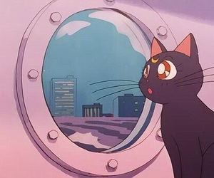 anime, sailor moon, and cat image